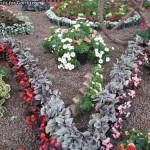گل آرایی با بگونیاها