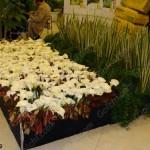 گل آرایی با گلهای سفید شیپوری و برگهای گیاهان