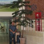 مهدی حکیمی در کنار کاج مطبق اهدایی
