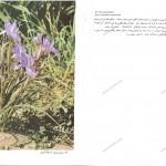 pg72-73