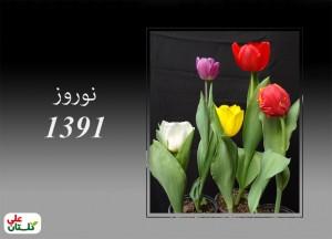 تصویر نمونه تولیدات لاله گلستان علی در نوروز 91