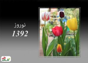 تصویر نمونه تولیدات لاله گلستان علی در نوروز 92